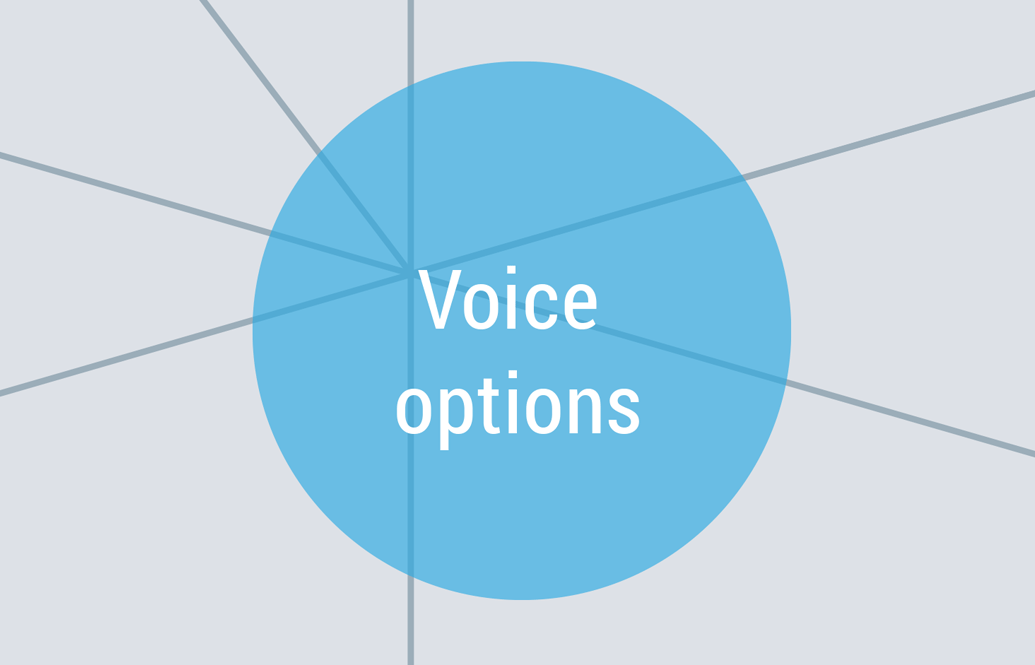 voice options